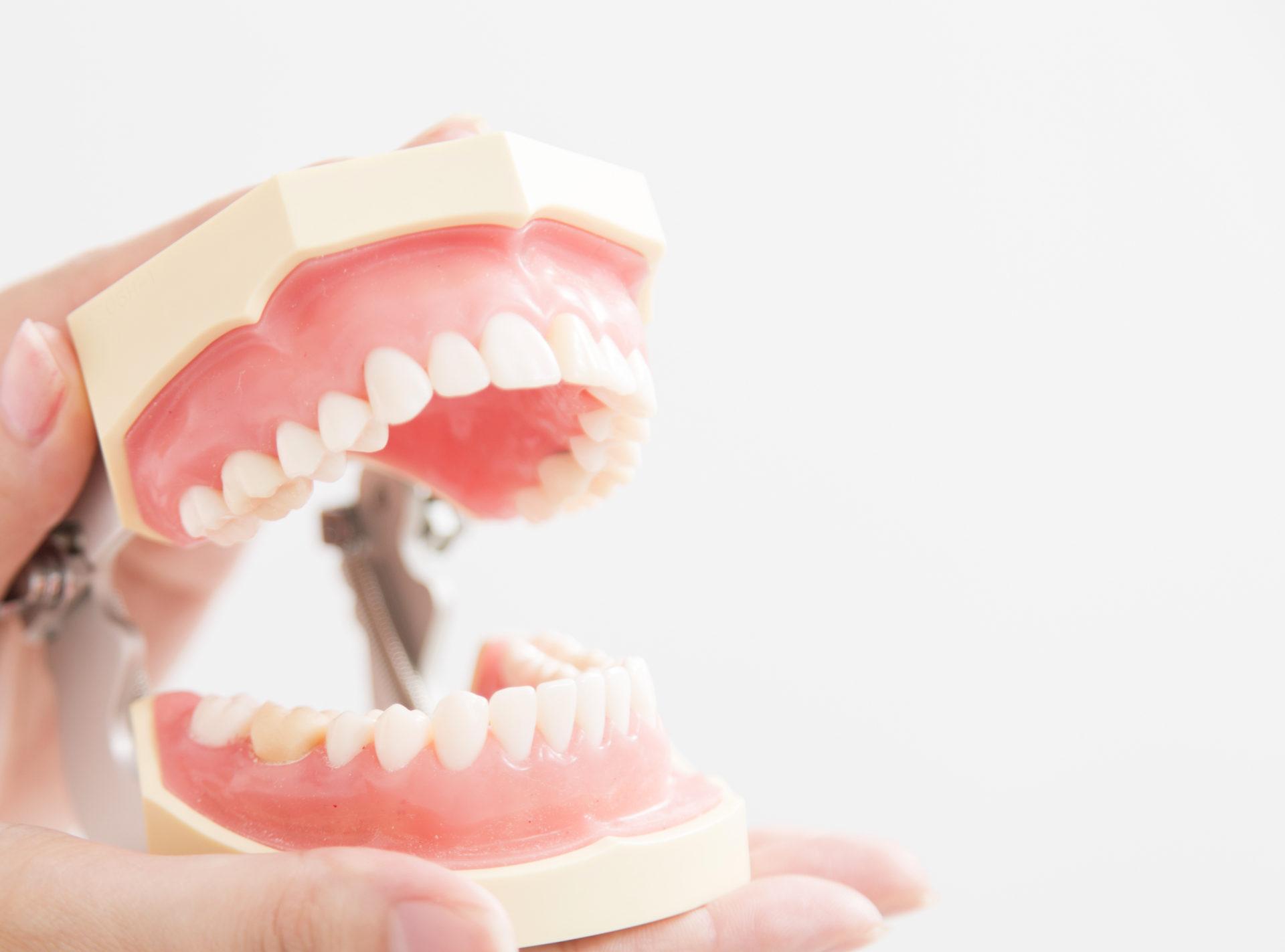 顎関節症・かみ合わせ